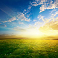 Recent Obituaries | Edwards Cremation and Funeral Services